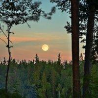 белые ночи севера :: Елена Третьякова