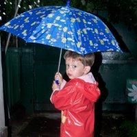 Хорошо гулять по лужам с голубым зонтом в руке! :: Александр Крупский