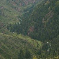 Река :: Андрей Солан
