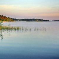 Утро на озере 2 :: Валерий Талашов
