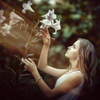 Какая красота... :: Сергей Пилтник