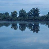 Туман, река и два рыбака :: Ирина Приходько