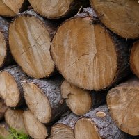 Поленница дров :: Екатерина Сысоева