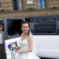 Свадьба в Питере :: Sergey Koltsov