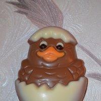 Шоколад :: Таня Фиалка