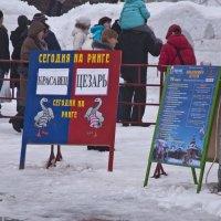 № 1 Сегодня на арене .. :: Petr Popov
