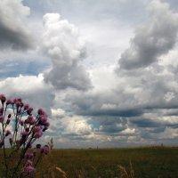 Облака :: Карпухин Сергей