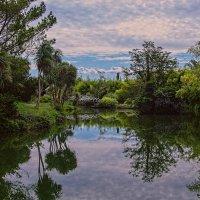Старый парк :: vladimir
