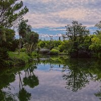 Старый парк :: vladimir Bormotov