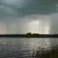 Теплый летний дождь :: Михаил Александров