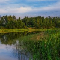 Вечер на Петровском озере. :: Andrei Dolzhenko