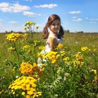 Цветущие луга :: Диана Задворкина