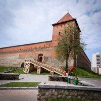 Лидский замок. :: Nonna