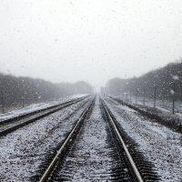 Первый снег :: Serega Rozenkov