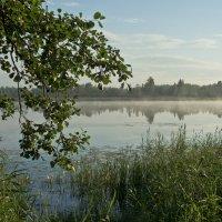 У озера :: Яков Реймер