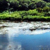 На излучине реки :: Александр Крылов