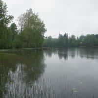 Живописное Святое Покровское озеро :: Елена Павлова (Смолова)