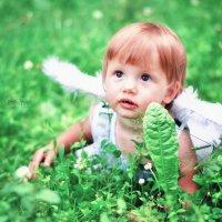 Маленький ангелочек :: Дина Seredina