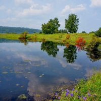 Озерцо на острове Нижнем. Сибирь. :: Галина Подлопушная