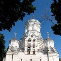 Среди деревьев возвышаясь... :: Екатерина Василькова