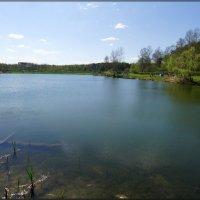 Пруд в парке Тропарево :: Igor Khmelev