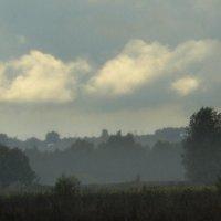 Туманы бродят по лугам как белые стада... :: veilins veilins