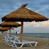 На пляже! :: Vladimir Didenko
