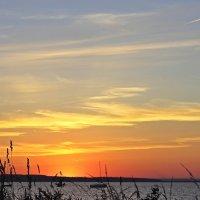 Солнце совсем зашло :: Лидия (naum.lidiya)
