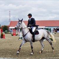 Конь и всадник. :: Валерия Комова