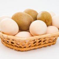 волосатые яйца :: Дионисий Великий