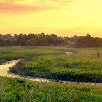 Вечер на реке Сож. Смоленская область. :: Игорь