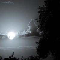 небо :: Alexey Bogatkin