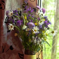 букетик полевых цветов :: Наталья Крюкова