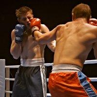 Ведь бокс не драка - это спорт, отважных и т.д. :: Сергей Черных