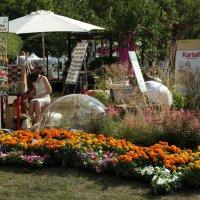 Фестиваль цветов, Парк Горького, 2014 :: Саша Ш.
