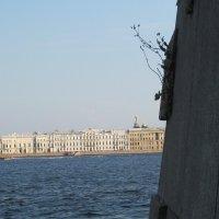 Прогулка по Петропавловской крепости :: Маера Урусова