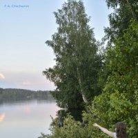 В ожидании... :: Андрей Чиченин