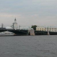 Вид на Дворцовый мост и Кунсткамеру :: Елена Каталина