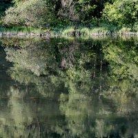 Тихое течение реки... :: Юрий Савинский