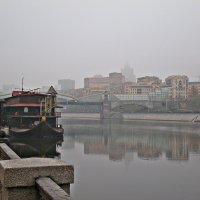 Туман... :: Ирина Князева