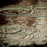 дождик капает по лужем :: вика Рыбина