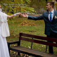 Свадьба Артема и Иры :: Алексей Куст