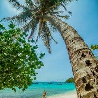 .Райское местечко :: Марина