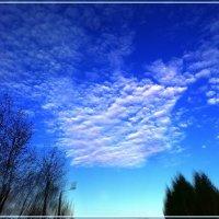 Под голубыми небесами.. :: Любовь Чунарёва