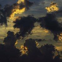 В воздухе пахнет грозой... :: juriy luskin