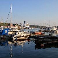в гавани :: liudmila drake