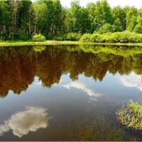 облачное отражение :: Сергей Швечков