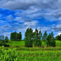 Русское поле :: Андрей Куприянов