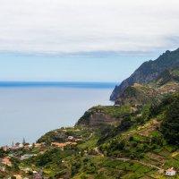 Madeira :: Людмила -
