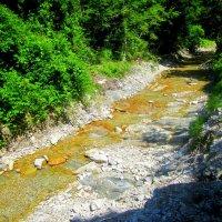 Горная река :: Катя Бокова